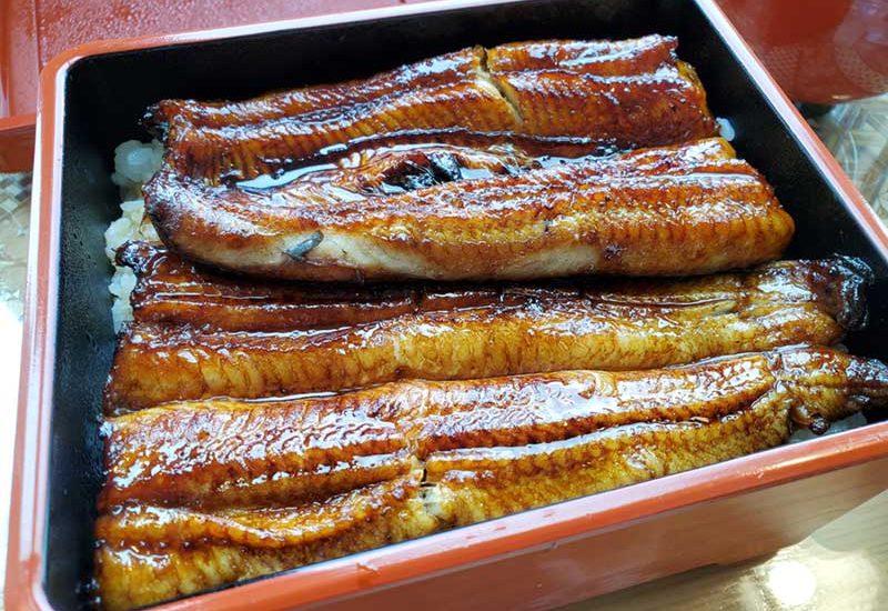 【うなぎ亭友栄】朝から行列で完売!神奈川県1番人気は本当だった!鰻の取り置き予約必須!