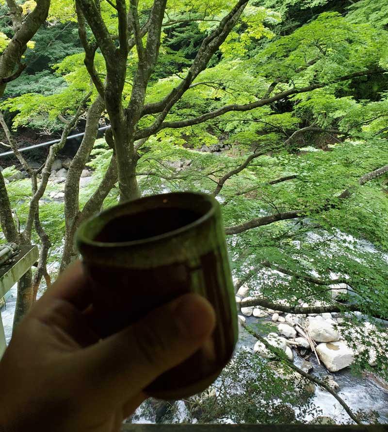 木々に乾杯